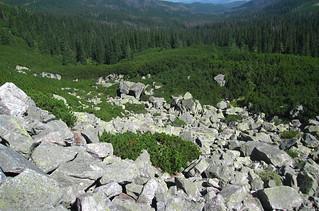 Tatra nature