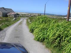 Almost certain (Tomek Mrugalski) Tags: ireland narrow road back grass