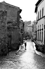 Stories from the streets... (modestino68) Tags: bn bw strada street pioggia rain ombrello umbrella madrugada