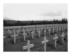 Nécropole nationale de Douaumont (DavidB1977) Tags: france canon ixus500 monochrome bw nb lorraine meuse verdun cimetière douaumont nécropole wwi tombes
