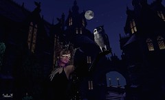 Sourcerer (Sadwolf SL Photos) Tags: thelookingglass sorcerer castle tower owl antlers earings necklace moon secondlife sl mesh avatar model night