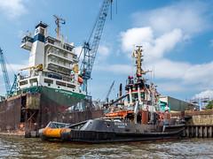 LR Hamburg 2018-5190280 (hunbille) Tags: birgittehamburg2018lr germany hamburg harbour crane shipyard ship yard boat elbe river