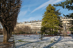 Jardin du Luxembourg - Paris (France) (Meteorry) Tags: europe france idf îledefrance paris jardinduluxembourg luxembourg jardin garden park parc pelouse lawn trees arbres urban city snow neige sorbonne winter hiver afternoon aprèsmidi statue february 2018 meteorry