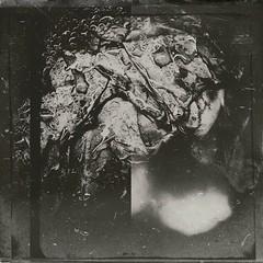 Produc(ed)-12902 (Poetic Medium) Tags: square cabbage stilllife produce blackandwhite kitcamghostbird snapseed ipod food