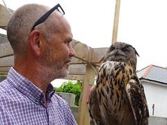 DSC07722 (guyfogwill) Tags: 2018 birds brandonsbirthday devon gbr guyfogwill may owls paignton unitedkingdom paigntontorquay