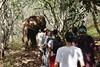 Les bénévoles découvrent le Cambodge autrement - Globalong (infoglobalong) Tags: mission humanitaire bénévolat volontariat stage étudiant social animalier environnement développement durable engagement international