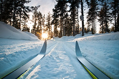 157573117 (valeriabuzzi) Tags: afterwork skiing sunrise sunset woods sweden skitrack vasaloppet crosscountryski snow recreationalpursuit snowdrift ski snowblades competitivesport outdoors leisureactivity dalarna powdersnow nordicevent crosscountryskiing