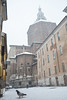Dietro il Duomo - Behind the Duomo. (sinetempore) Tags: dietroilduomo behindtheduomo pavia street uccello bird piccione pigeon neve snow inverno winter freddo cold