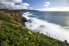 Spring California Coast (milton sun) Tags: spring californiacoast musselrockpark dalycity california longexposure seascape bay ngc bayarea wave ocean shore seaside coast northerncalifornia westcoast pacificocean landscape outdoor clouds sky water rock mountain rollinghills sea sand beach cliff nature flowers green farm grass wildflowers