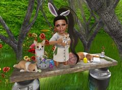(=^_^=) (Serena Reins) Tags: confession photograhy second life baby bunny corgi ears grass sun light basket easter 2018 eggs carrot milk trees toddleedoo