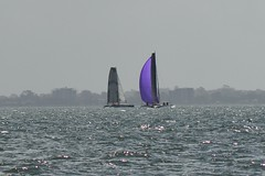 LOX_4158 (Lox Pix) Tags: australia queensland brisbanetogladstone yachtrace catamaran trimaran 2018 bossracing multihull loxpix moretonbay shorncliffe cabbagetreecreek rudder aground sailing