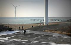 Au pied des éoliennes, Deltapark Neeltje Jans, Nederland (claude lina) Tags: claudelina nederland hollande paysbas zeelande zeeland merdunord noordzee plage dune beach debanjaard kamperland noordbeveland éolienne