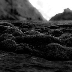 In Canyons 232 (noahbw) Tags: d5000 dof moss nikon utah zionnationalpark abstract autumn blackwhite blackandwhite blur bw canyon cliffs depthoffield desert landscape light monochrome mountains natural noahbw rock shadow sky square stone