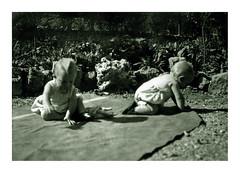 i gemelli a Vicenza - settembre 1935 (dindolina) Tags: photo fotografia blackandwhite bw biancoenero monochrome monocromo sepia seppia vintage 1935 1930s thirties annitrenta italy italia veneto vicenza family famiglia history storia gemelli twins