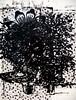 Untitled (Thomas Hawk) Tags: america chicago christopherwool cookcounty illinois mca museum museumofcontemporaryartchicago usa unitedstates unitedstatesofamerica untitled artmuseum painting contemporary art
