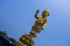 Nepal 2018_-141 (sandmilk) Tags: nepal lumbini statue buddha