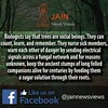 "सदियों से जैन धर्म कहता आया है, की पेड़ एकइंद्रिया जीव है ! #Jainism has been saying that Trees are ""Ekindriya Jeev"" since Ages! It's Just scientists are proving what's already said in Jainism ! Follow #Jainism's Most Loved Website on @jainnewsviews & Expl (Jain News Views) Tags: jainism"