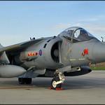 British Aerospace Harrier GR.7 thumbnail