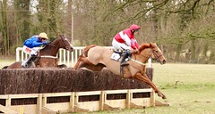 In the lead.. (springers1) Tags: dalton park holderness hunt point