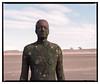 Crosby_Beach_PROVIA-4 (D_M_J) Tags: crosby beach another place antony gormley sculpture man sand landscape north west uk england film camera slide medium format 120 roll 6x7 mamiya rb67 pro sd fuji fujifilm provia 100f tetenal colortec e6 epson v850 vuescan colour color