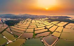 Tai Sang Wai fish ponds (3dgor 加農炮) Tags: pond fishpond taisangwai mavicair sunset golden reflection