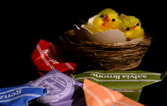 Sweet wishes (M a r i S à) Tags: blackbackground chick nest candies macro stilllife easter happyeaster lowkey light dimlight