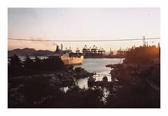 033_20 by jimbonzo079 - Keratsini Piraeus Greece - 18/7/2016  Canon AE-1 & FD 50mm f1.8 Lens AGFA Precisa CT 100 Konica Minolta dimage scan dual iv