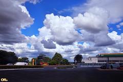 Posto Zebu (Otacílio Rodrigues) Tags: nuvens clouds estrada road céu posto gasstation sky árvores trees uberaba br050 viagem travel minasgerais brasil oro