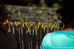 Lourdes 165-A (José María Gil Puchol) Tags: aquitaine basilique boujie catholique cathédrale cierge eau eaumiraculeuse fidèle france handicapé jeanpaulii josémariagilpuchol lourdes paysbasque prière pélèrinage religion