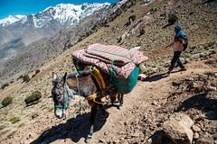 (Mathijs Buijs) Tags: mule man atlas mountains mountain range morocco toubkal snow peaks northern africa canon eos 5d mark iii