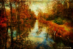 What Dreams Are Made Of (socalgal_64) Tags: river stream usa pennsylvania northamptonpa carolynlandi texture autumn fall colorful art leaves reflections scenic coth5