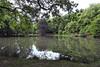 Rheydt-Stadtwaldweiher (borntobewild1946) Tags: mönchengladbachrheydt rheydtstadtwald rheydtstadtwaldweiher weiher pond 21052018