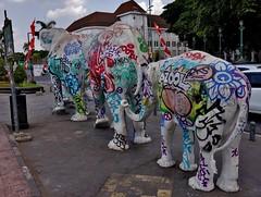 """INDONESIEN, Java , Zoowerbung in Yogyakarta, 17332/9874 (roba66) Tags: reisen travel explorevoyages urlaub visit roba66 asien südostasien asia eartasia """"southeastasia"""" indonesien indonesia """"republikindonesien"""" """"republicofindonesia"""" indonesiearchipelago inselstaat java yogyakarta zoowerbung werbung elefanten elephant art kunst aufdenstrasen"""