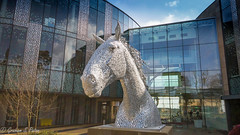 Roslin institute (Graham S Paton) Tags: andy scott sculptor horse head easter bush vet school edinburgh university
