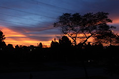 Amazing sunrise, Bogotá   #colombiatravel #nofilter #jamphoto #sunrise #magicsky #orange #orangesky #shadows (JAM1025) Tags: colombiatravel jamphoto shadows nofilter orangesky magicsky sunrise orange