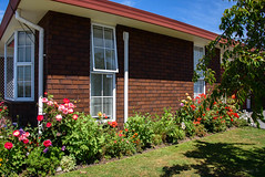Early Summer Garden (Jocey K) Tags: dahlia newzealand nikond750 christchurch flowers house garden building architecture sky clouds shadows tree
