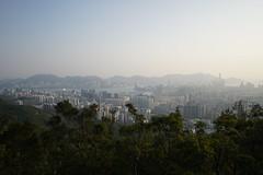 DSC01898 (X-Ray Alpha Photography) Tags: 香港 hongkong hongkong2018 香港二〇一八 kowloonpeak 飛鵝山
