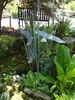 Beside the pond (bryanilona) Tags: birds sculpture gardenfeature pond leaves trees bench ashwoodnursery wallheath kingswinford rocks stones path