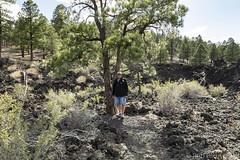 SedonaVacation_May2018-3184 (RobBixbyPhotography) Tags: arizona flagstaff sedona sunsetcrater vacation nationalmonument volcano travel