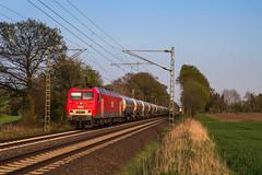 MEG 156 001 - Borstel (b. Linsburg) (Pau Sommerfeld Acebrón) Tags: