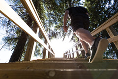 Steps on hiking route in Tahko holiday centre (VisitLakeland) Tags: tahko steps stairway nature outdoor hiking walking training tree forest finland lakeland kävyly portaat tahkoportaat luonto