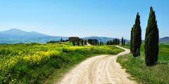 Pienza (south*swell) Tags: italy tuscany pienza gladiator cypress landscape scenery track