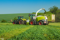 CLAAS Team (martin_king.photo) Tags: springwork springwork2018 silage silage2018 inaction action first today outdoor claasworldwide machine sky martin king photo agriculture machinery machines tschechische republik powerfull power dynastyphotography lukaskralphotocz agricultural great day czechrepublic fans work place tschechischerepublik martinkingphoto welovefarming working modern landwirtschaft colorful colors blue photogoraphy photographer canon tractor love farming daily onwheels farm skyline allclaaseverything claasfans worker claasjaguar shredlage claaspickup header claasshredlage field green red