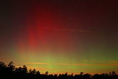 Aurora, NJ 2004 (Daniel McCauley) Tags: aurora carranza field new jersey nj northen lights borealis astrophotos astropix astrophotography pine barrens wharton state forest auroras solar flare