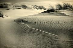 panta rhei (mare photo) Tags: pantarhei monochrome sand structures marephoto toned dunes wind meditation themagiceye