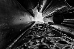 sib mon 04 (Alph Thomas) Tags: poweershotg7x digitalphotography landscape monochrome photography finland helsinki sibeliusmonument reflections urbanlandscape smartpost uusimaa fi