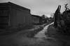 Suburbia Back Lane #4 (mag_mouse) Tags: suburbia lane monochrome blackwhite gloom moody
