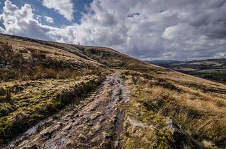 The path through