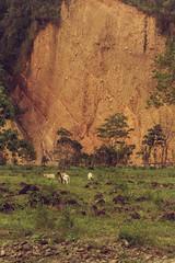 Chingaza, Colombia, 2018 (Sergio Fabara) Tags: sergiofabara fabara kinofabara photography fotografía chingaza colombia nya