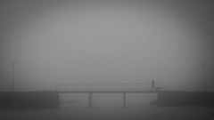 walking the fog (Eric Spies) Tags: walking dog hund spazieren spaziergang gassi fog nebel foggy nebelig bridge brücke silhouette silhouetten silhouettes vignette vignettierung holland netherlands niederlande nijmegen lent nijmegenlent nimwegen fujifilm xt10 xc 50230 schwarzweiss sw blackwhite blackandwhite bw monochrom monochrome mono frühling spring weather wetter märz march morgen morning früh early contrast contrasts kontrast kontraste gehen edithpiafstraat notenlaantje rijnwaalpad atmosphere mood stimmung gelderland guelders fuji fujinon mist misty minimal minimalism minimalist minimalismus minimalistlandscapes minimalistisch grau grautöne grey